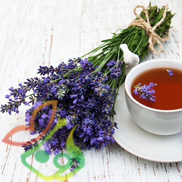 گیاه دارویی اسطوخودوس